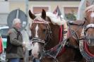 Der historiche Kaufmannszug zu Gast in Eisenbach 050
